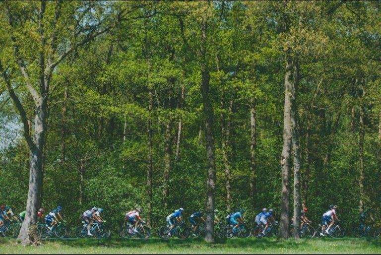 La belleza del ciclismo.