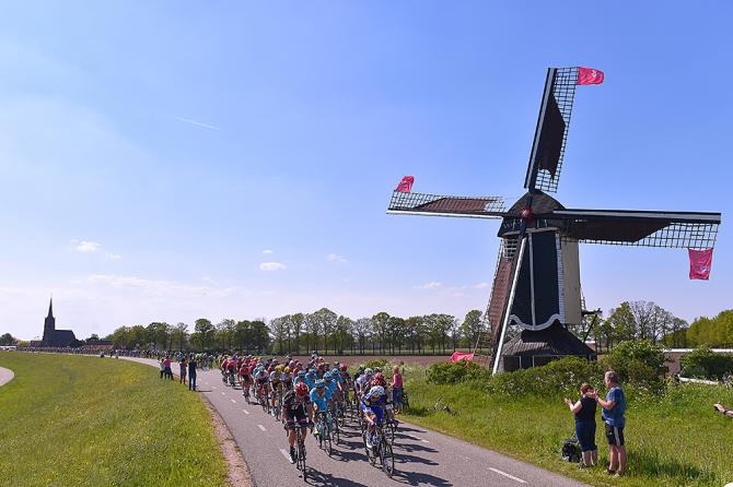 Una imagen holandesa a más no poder