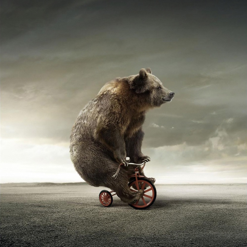 La hibernación en elciclismo
